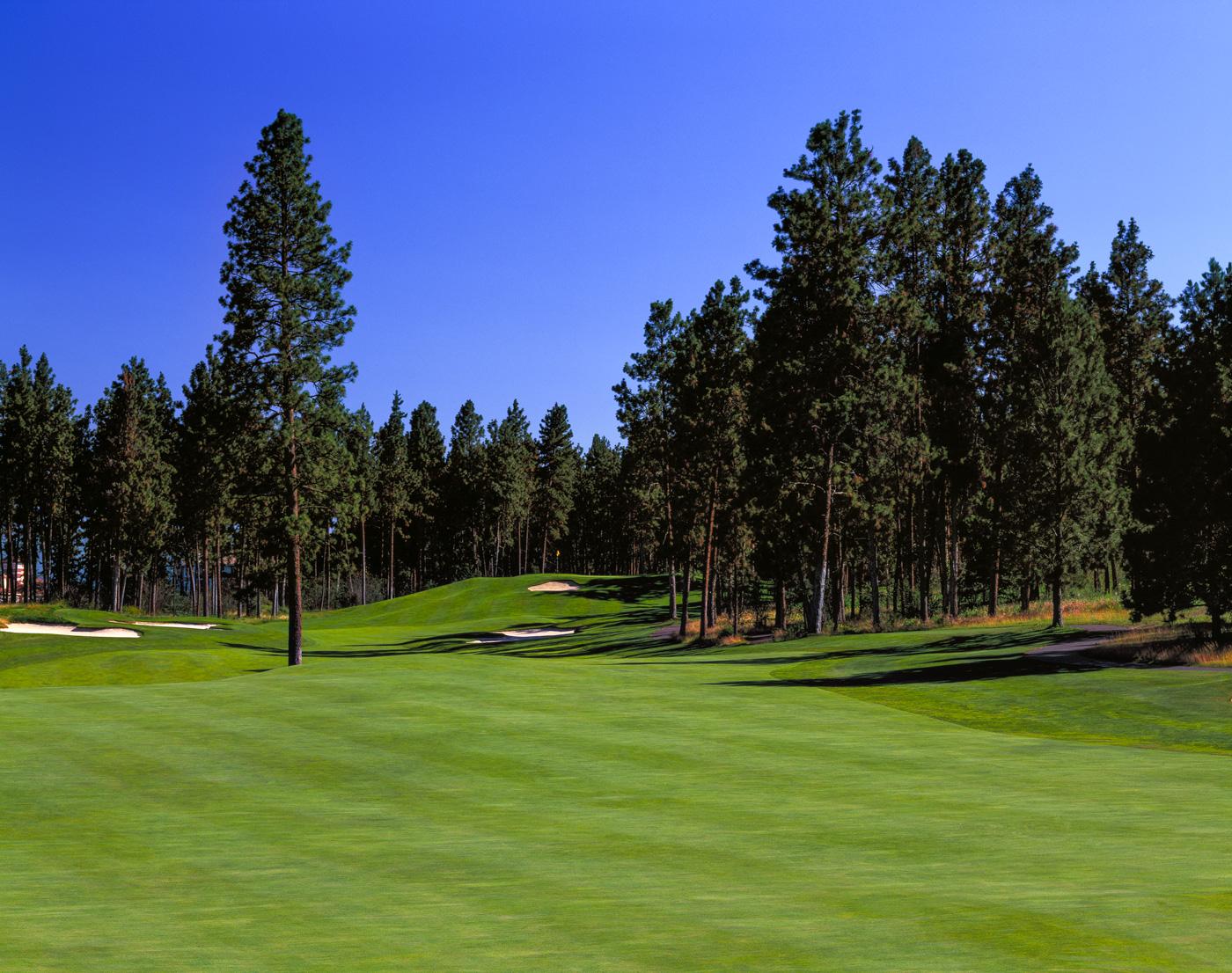 Vancouver Island Golf Tournaments